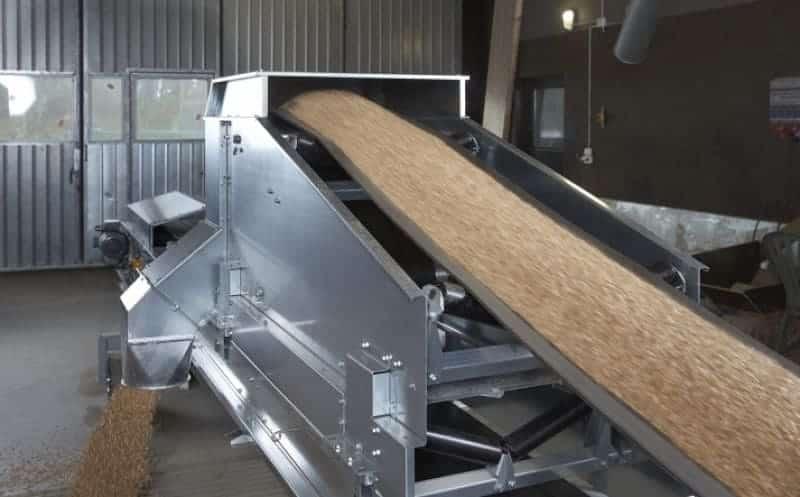 convoyeur à bande transportant du grain