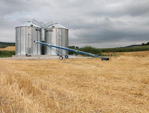 agriconsult-stockage-sechage-grain-silo-cellule-grain-cereale-VERDIER-63