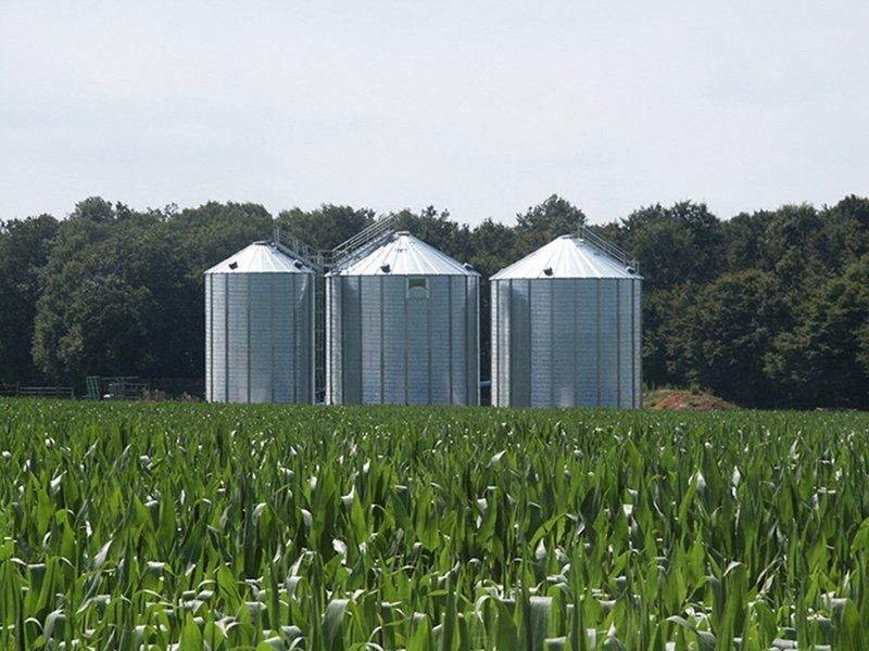 3 silos à grain dans un champs de maïs