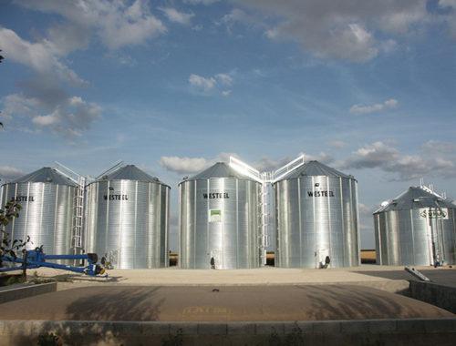 4 silos fond plat et une cellule sécheuse avec une vis sur chariot