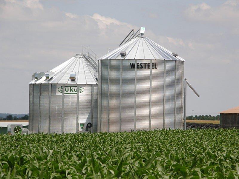 une cellule sécheuse et un silo à grain dans un champ de maïs