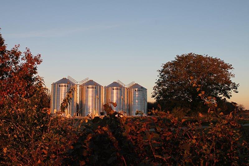 4 silos à grains entourés d'arbre au soleil couchant