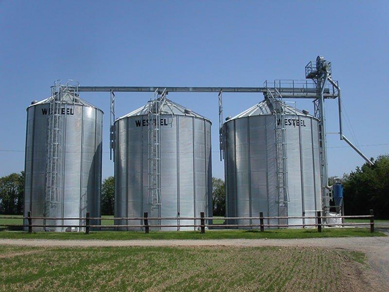ligne de 3 silos à grains avec élévateur à godet et convoyeur à chaine